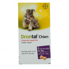 DRONTAL Cpr chien B/6